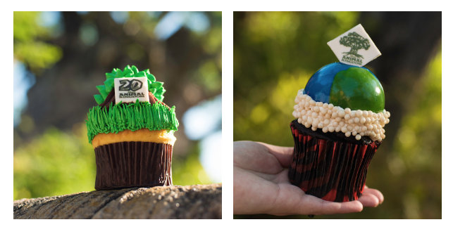 Tree of Life and Earth Day Cupcake ©Disney