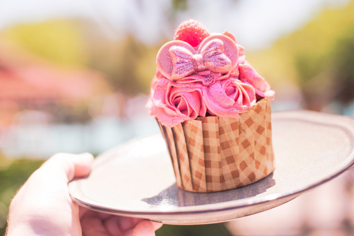 Millennial Pink Cupcake at The Mara ©Disney