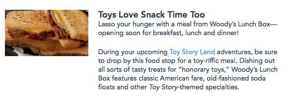 Screenshot of Disney World website