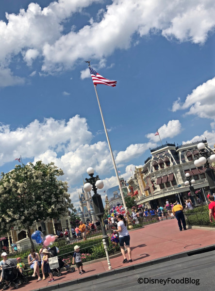 Main Street, U.S.A. Flag