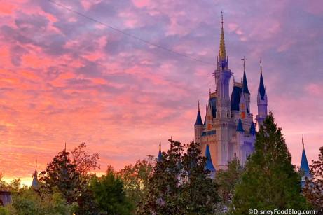 Ready to Head to Disney World?