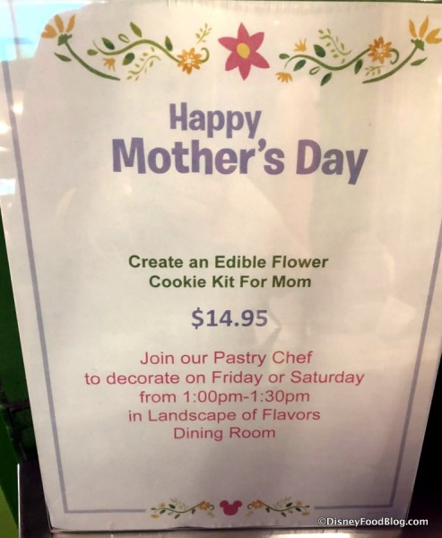 Flower Pot Activity Kit Decorating Information