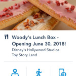 How to Avoid the Lines at Woody's Lunch Box When It Opens in Toy Story Land