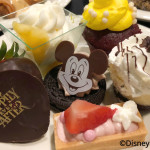 Review: Happily Ever After AFTER Fireworks Dessert Party at Magic Kingdom!!