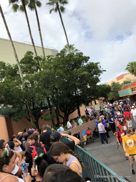 Toy Story land Opening Day Lines