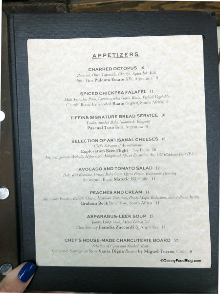 Appetizer Menu at Tiffins