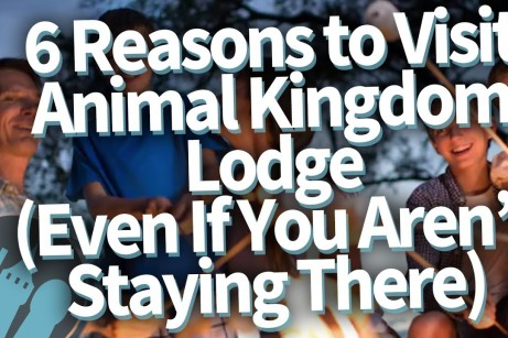 reasons to visit animal kingdom lodge thumb