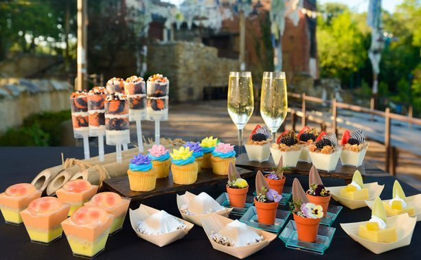 Rivers of Light Dessert Party ©Disney