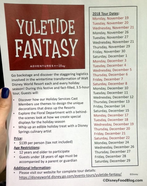 Yuletide Fantasy Tour information (click to enlarge)