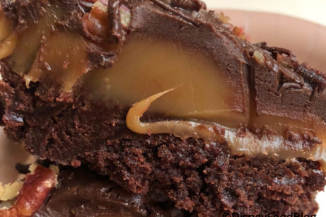 This Turtle Brownie in Epcot is SO MUCH AWESOME.