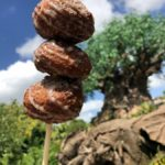 Review: Apple Cider Donut Holes at Animal Kingdom's Isle of Java