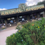 What's New in Disney World's Animal Kingdom: 10-20-18
