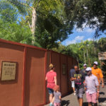 Animal Kingdom Construction and Refurbishment Update