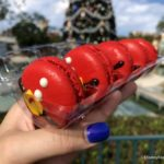 NEW: Santa Macarons at Oasis Canteen in Disney's Hollywood Studios