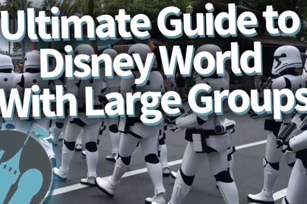 DFB Video: Ultimate Guide to Disney World with Large Groups