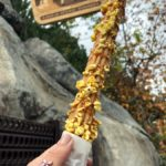 """Get Your Ears On"" EATS: Caramel Corn Churro at Willie's Churros in Disney California Adventure"