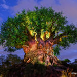 MENU Updates in Disney's Animal Kingdom!