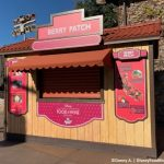 REVIEW! Find Out What We'd PICK Again From Disney California Adventure's Berry Patch Food and Wine Booth!