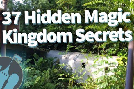 DFB Video: 37 Hidden Magic Kingdom Secrets!