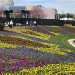 What's New in Epcot: Flower and Garden Fest Landscaping, Lots of Construction, Funnel Cake Updates, and More!