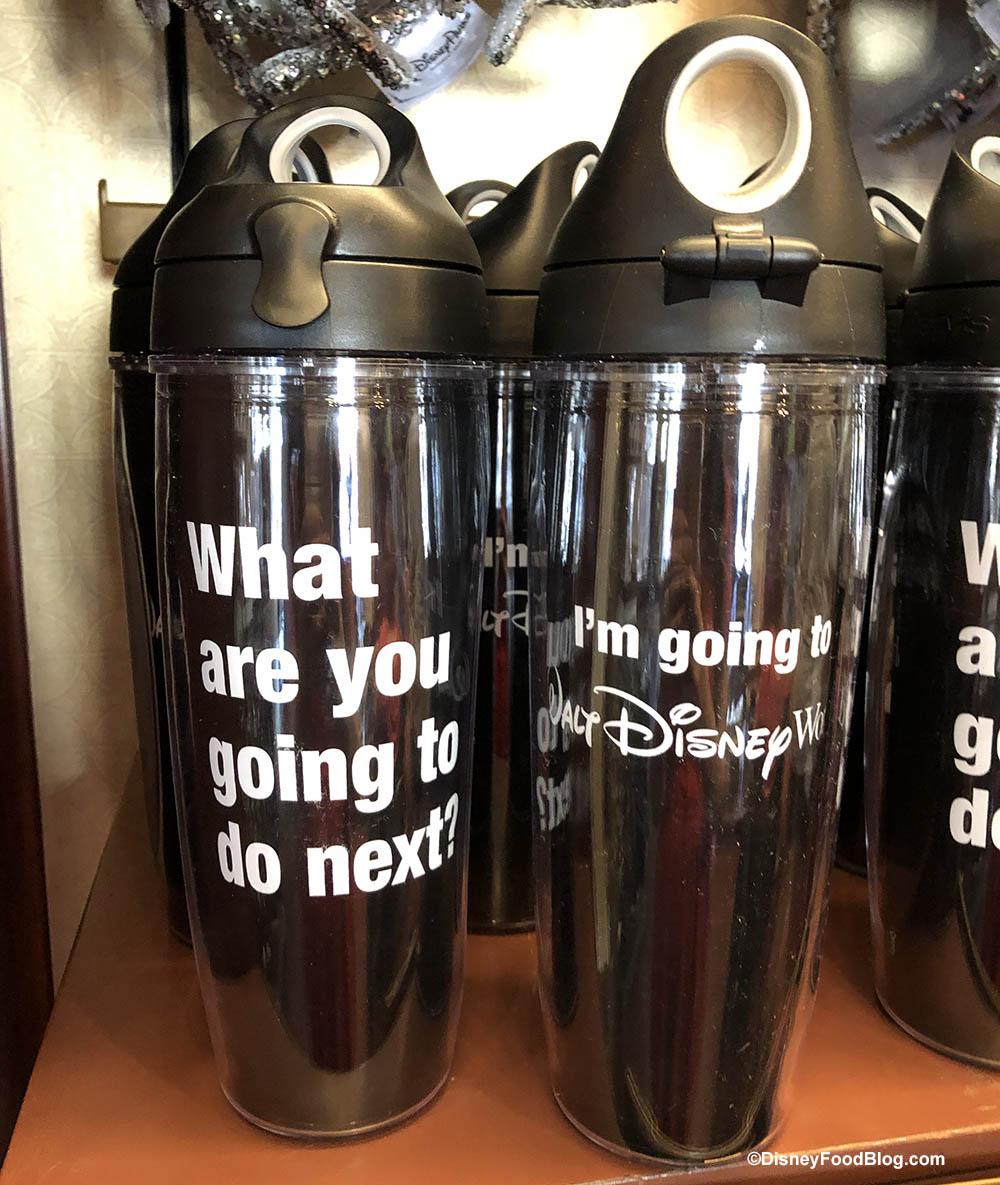 9b6e9e39 New Disney World Merchandise Asks