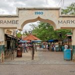 Harambe Market Set to Reopen This Weekend in Disney World