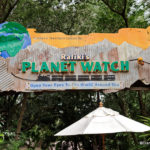NEW Animation Experience to Debut in Disney's Animal Kingdom with Reopening of Rafiki's Planet Watch in July