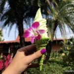 "Review! NEW ""Heart of Te Fiti"" Lime Dole Whip Cone at Pineapple Lanai in Disney's Polynesian Village Resort"