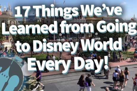 DFB Video: 17 Things We've Learned from Going to Disney World Every Day!