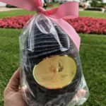 You've GOT to See INSIDE This Grand Floridian Easter Egg!