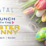 Have Brunch With The Easter Bunny at Catal in Disneyland's Downtown Disney District