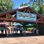 Typhoon Lagoon vs Blizzard Beach? Which Disney Water Park is Worth Your Non-Park Day?