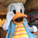 Happy Birthday, Donald! How To Celebrate Donald Duck's 85th Birthday in Disneyland Resort