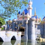 You Might Accidentally Miss This Important Disneyland Rule