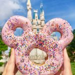 Here's the BIGGEST Disney World News That You Missed This Week!