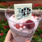 Review! 30th Anniversary Raspberry Mousse Verrine at Disney's Hollywood Studios