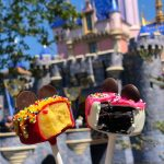REVIEW: ADORABLE Birthday Cake Pops Debut in Disneyland!