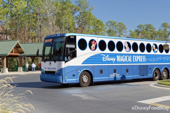 DFB Video: 15 Disney World Problems You Can Solve In 5 Minutes Or Less