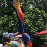 What's New at Disney's Animal Kingdom! Scavenger Hunts, Frozen Drinks, and Lion Tails!