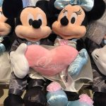 DFB Video: Bizarre Disney Honeymoon Stories… and Tips We Learned From Them!
