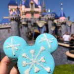 Review! New Arendelle Aqua Macaron in Disneyland Resort
