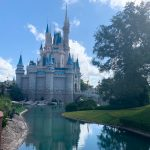DFB Video: Secret Tips To Make Your Disney World Trip MUCH Easier!
