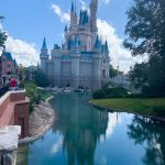 DFB Video: 3 Reasons NOT To Go To Disney World in 2020 (And 2 Reasons You SHOULD)!
