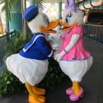 You HAVE to See This New HARVEYS Collection If You Love Donald Duck!