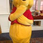 Honey, Look What We Found! Check Out the Adorable Pooh Cozy Knit in Disney World!