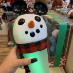 Ssshhh! This Disney World Holiday Souvenir Has a SECRET!