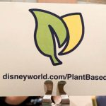 Review! Disney Debuts New Plant-Based Website and Menu Options!