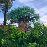 GOOD NEWS! Disney's Animal Kingdom Has Just Extended Its Hours in March!