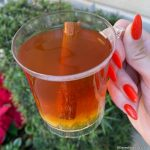 REVIEW! Mull Over the NEW Mulled Cider at the 2019 Epcot International Festival of the Holidays!