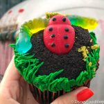 Pics and Review! The New Bugs 'n' Grub Cupcake is a Slimy, Yet Satisfying Treat at Animal Kingdom!